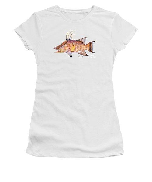 Hog Fish Women's T-Shirt (Junior Cut) by Carey Chen