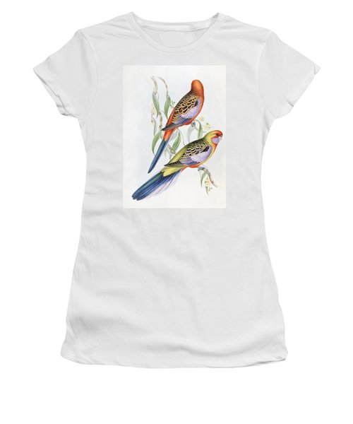 Platycercus Adelaidae From The Birds Of Australia Women's T-Shirt (Junior Cut) by John Gould