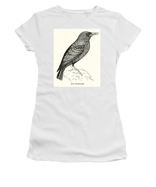 The Starling Women's T-Shirt (Junior Cut) by English School