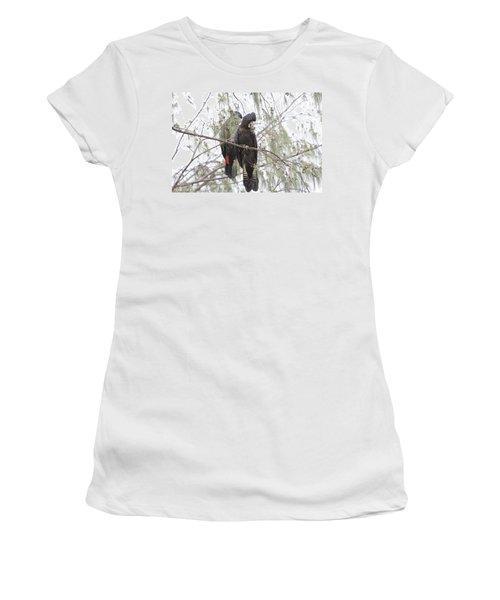 Red Tailed Black Cockatoos Women's T-Shirt (Junior Cut) by Douglas Barnard