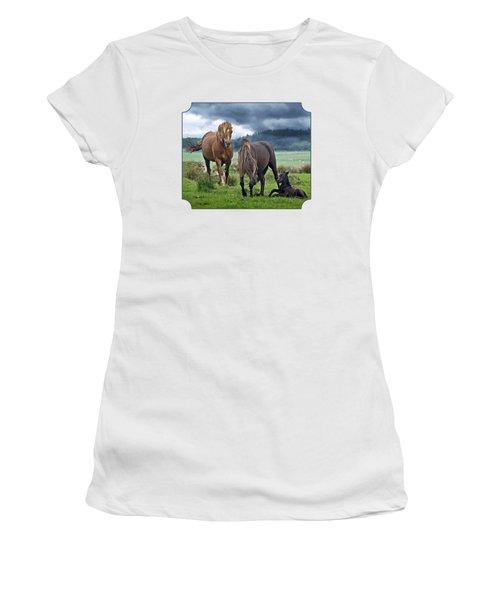 Dartmoor Ponies Women's T-Shirt (Junior Cut) by Gill Billington