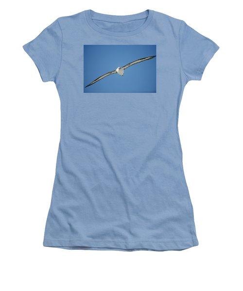 Laysan Albatross Soaring Hawaii Women's T-Shirt (Junior Cut) by Tui De Roy
