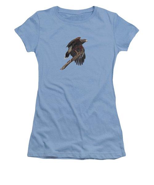 Harris Hawk - Transparent Women's T-Shirt (Junior Cut) by Nikolyn McDonald