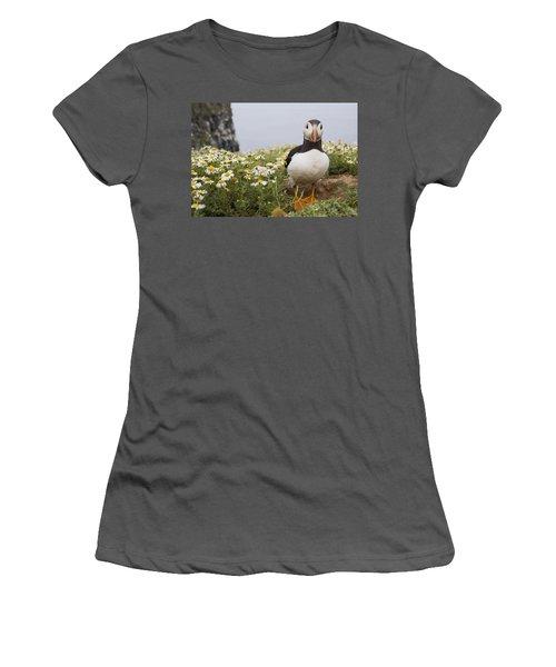 Atlantic Puffin In Breeding Plumage Women's T-Shirt (Junior Cut) by Sebastian Kennerknecht