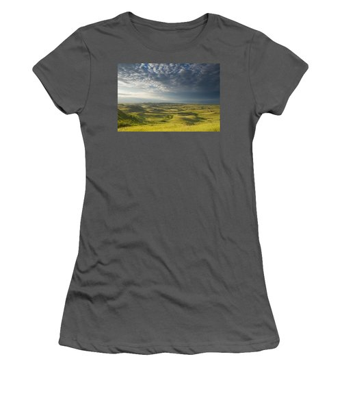 Killdeer Badlands In The East Block Of Women's T-Shirt (Junior Cut) by Dave Reede