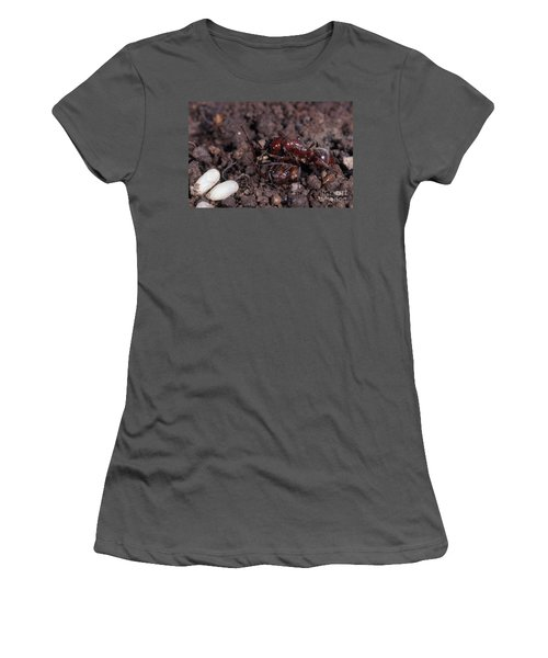 Ant Queen Fight Women's T-Shirt (Junior Cut) by Gregory G. Dimijian, M.D.