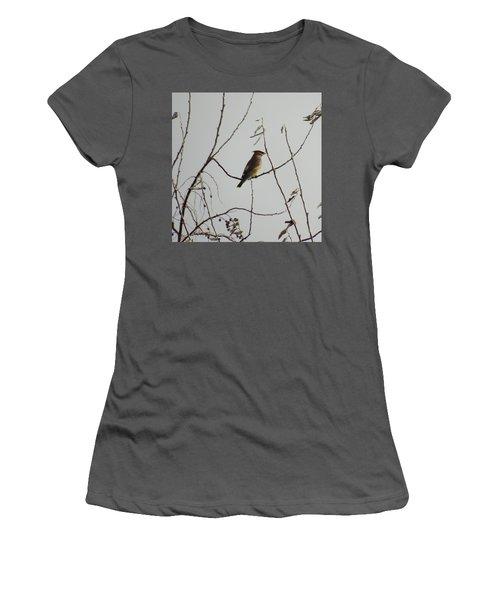 Cedar Wax Wing In Tree Women's T-Shirt (Junior Cut) by Kenneth Willis