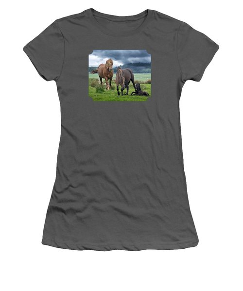 Dartmoor Ponies Women's T-Shirt (Junior Cut) by Gill Billington