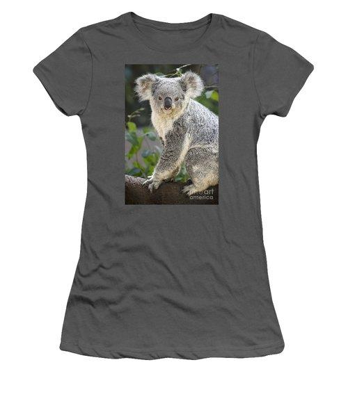 Female Koala Women's T-Shirt (Junior Cut) by Jamie Pham
