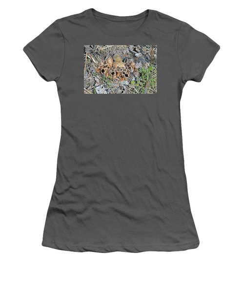 Just Hatched American Woodcock Chicks Women's T-Shirt (Junior Cut) by Asbed Iskedjian