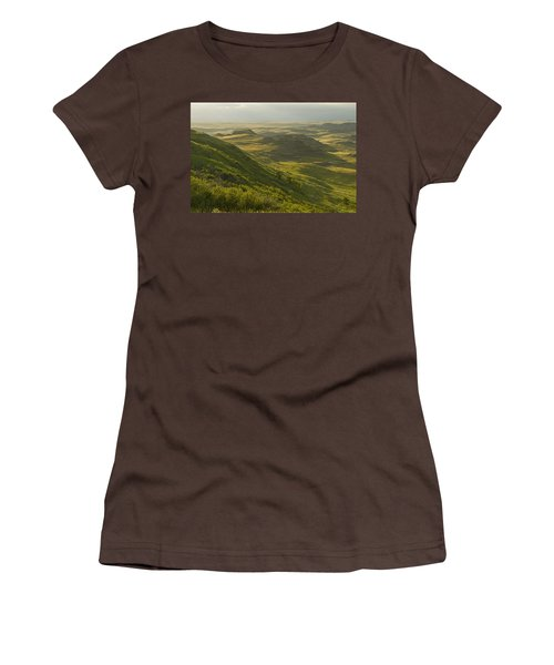 Killdeer Badlands In East Block Of Women's T-Shirt (Junior Cut) by Dave Reede