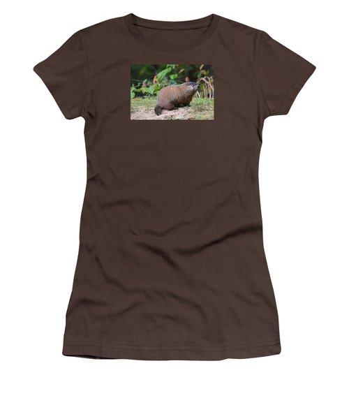 Groundhog  0590 Women's T-Shirt (Junior Cut) by Jack Schultz
