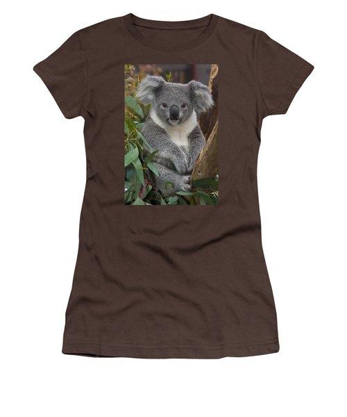 Koala Phascolarctos Cinereus Women's T-Shirt (Junior Cut) by Zssd