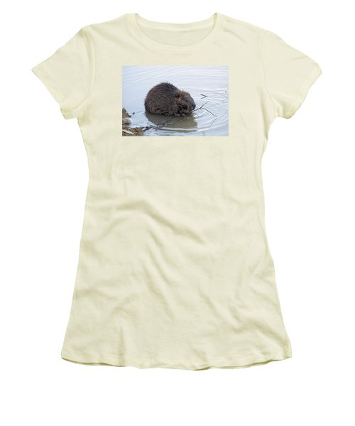 Beaver Chewing On Twig Women's T-Shirt (Junior Cut) by Chris Flees