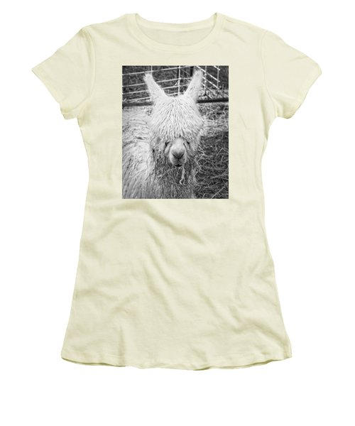 Black And White Alpaca Photograph Women's T-Shirt (Junior Cut) by Keith Webber Jr