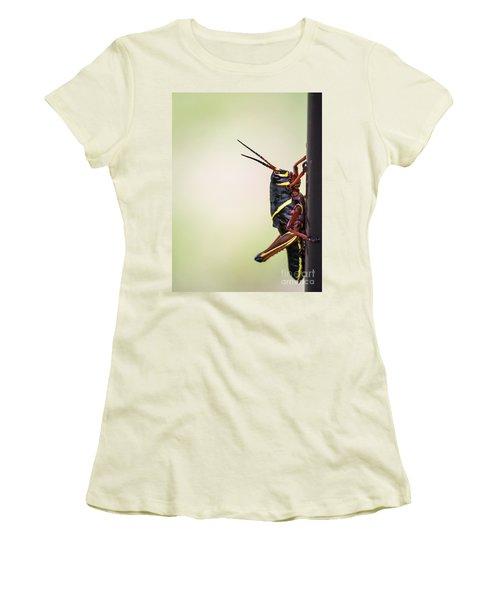 Giant Eastern Lubber Grasshopper Women's T-Shirt (Junior Cut) by Edward Fielding