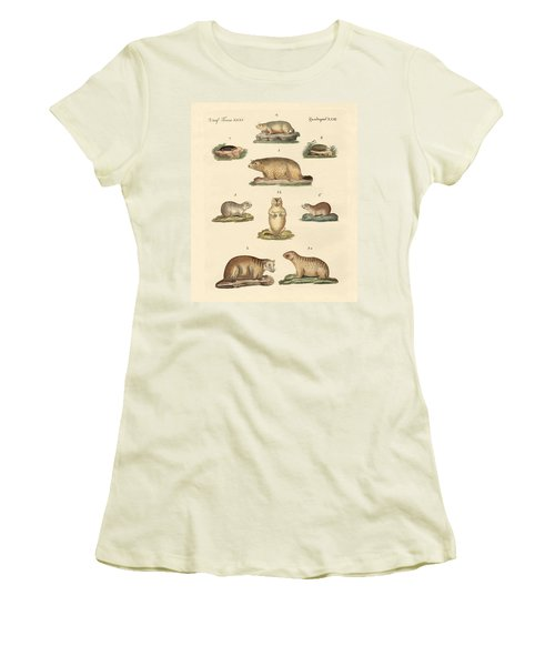 Marmots And Moles Women's T-Shirt (Junior Cut) by Splendid Art Prints