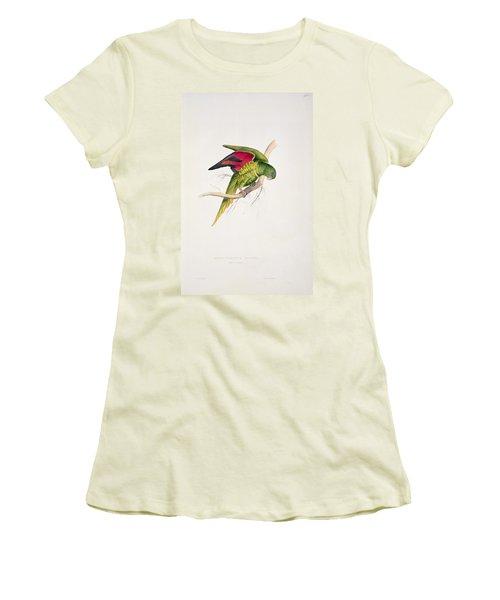 Matons Parakeet Women's T-Shirt (Junior Cut) by Edward Lear