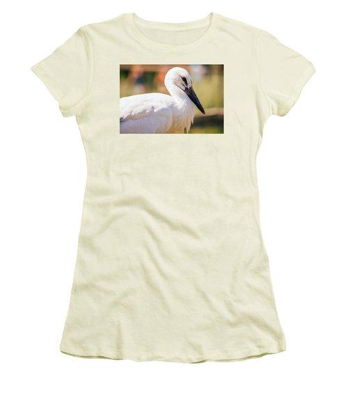 Young Stork Portrait Women's T-Shirt (Junior Cut) by Pati Photography