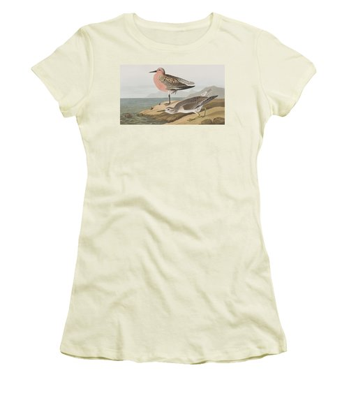 Red-breasted Sandpiper  Women's T-Shirt (Junior Cut) by John James Audubon