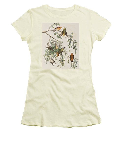 American Crossbill Women's T-Shirt (Junior Cut) by John James Audubon