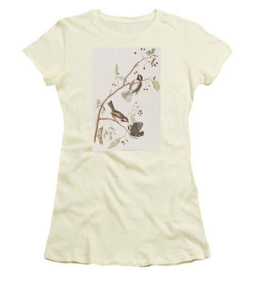 Canadian Titmouse Women's T-Shirt (Junior Cut) by John James Audubon