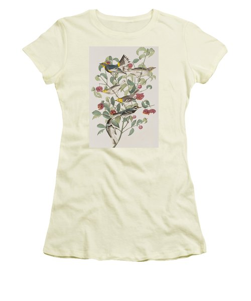 Audubons Warbler Hermit Warbler Black-throated Gray Warbler Women's T-Shirt (Junior Cut) by John James Audubon