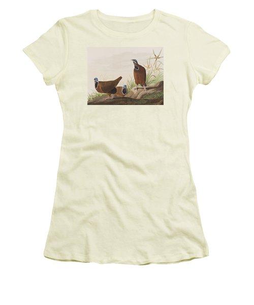 Blue Headed Pigeon Women's T-Shirt (Junior Cut) by John James Audubon