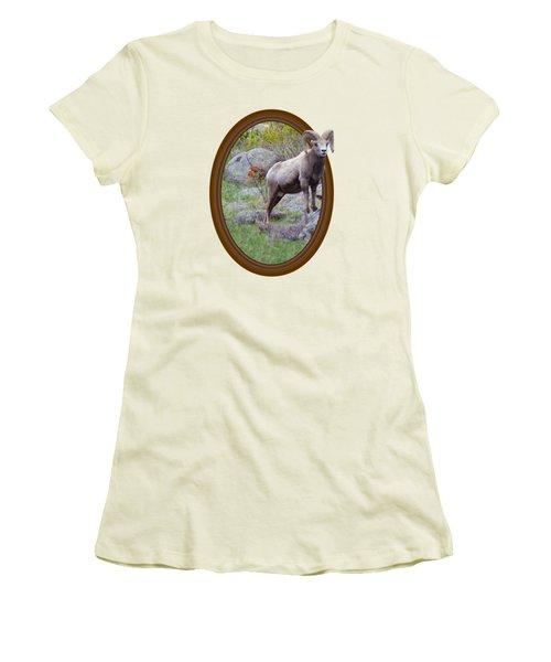 Colorado Bighorn Women's T-Shirt (Junior Cut) by Shane Bechler