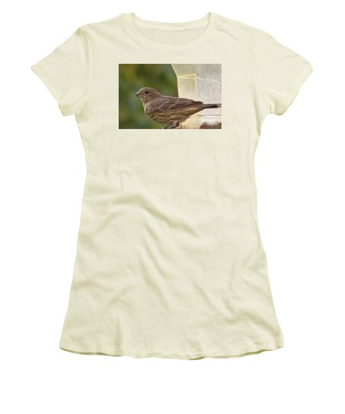Crossbill Female Portrait      September    Indiana Women's T-Shirt (Junior Cut) by Rory Cubel