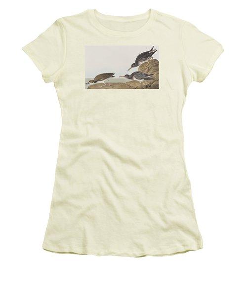 Purple Sandpiper Women's T-Shirt (Junior Cut) by John James Audubon