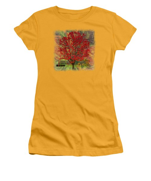 Autumn Scenic 2 Women's T-Shirt (Junior Cut) by John M Bailey