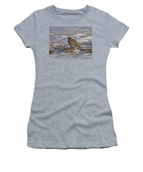 Winter Bird Women's T-Shirt (Junior Cut) by Jeff Swan