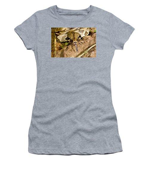 Boa Constrictor Women's T-Shirt (Junior Cut) by Gregory G. Dimijian, M.D.