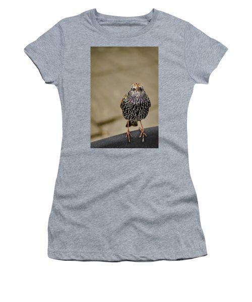 Angry Bird Women's T-Shirt (Junior Cut) by Heather Applegate
