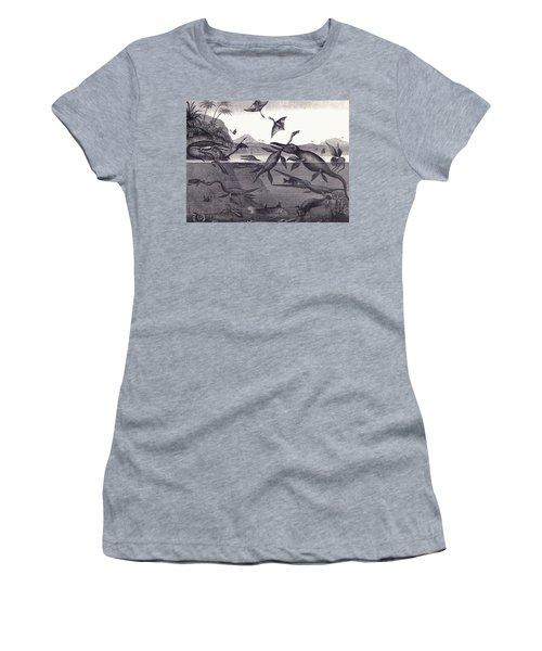 Prehistoric Animals Of The Lias Group Women's T-Shirt (Junior Cut) by English School