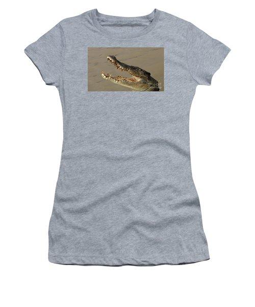 Salt Water Crocodile 1 Women's T-Shirt (Junior Cut) by Bob Christopher