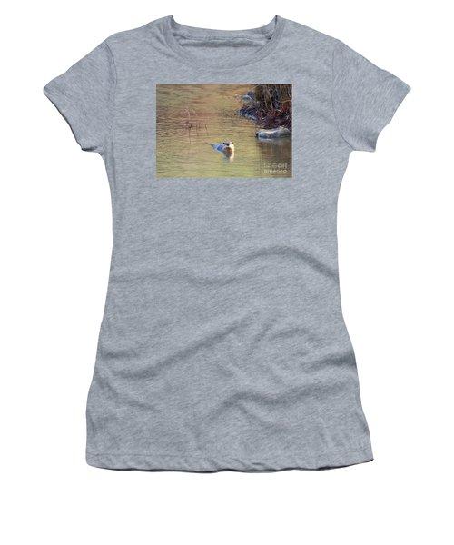 Sunrise Otter Women's T-Shirt (Junior Cut) by Mike Dawson