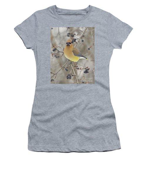 Cedar Wax Wing Women's T-Shirt (Junior Cut) by Robert Pearson