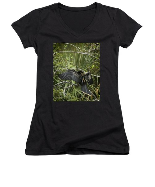 Anhinga Papa Women's V-Neck T-Shirt (Junior Cut) by Phill Doherty