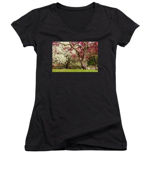 Apple Blossom Colors Women's V-Neck T-Shirt (Junior Cut) by Joe Mamer