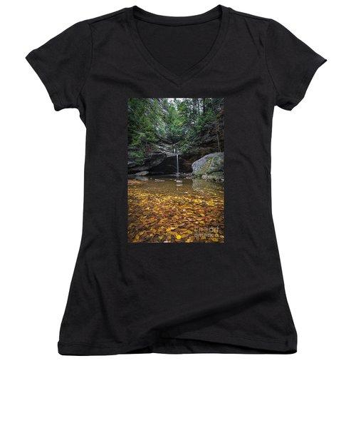 Autumn Falls Women's V-Neck T-Shirt (Junior Cut) by James Dean