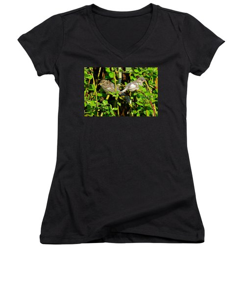 Babies Afraid To Fly Women's V-Neck T-Shirt (Junior Cut) by Frozen in Time Fine Art Photography