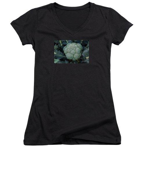 Broccoli Women's V-Neck T-Shirt (Junior Cut) by Robert Bales