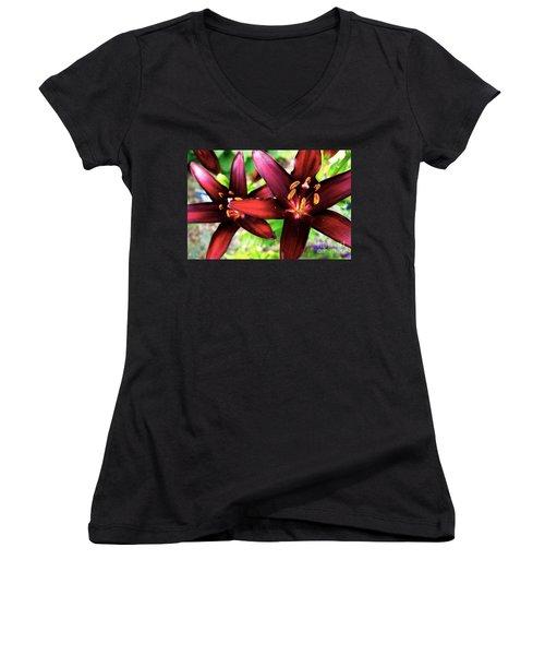 Dimension Lily 2 Women's V-Neck T-Shirt (Junior Cut) by Jacqueline Athmann
