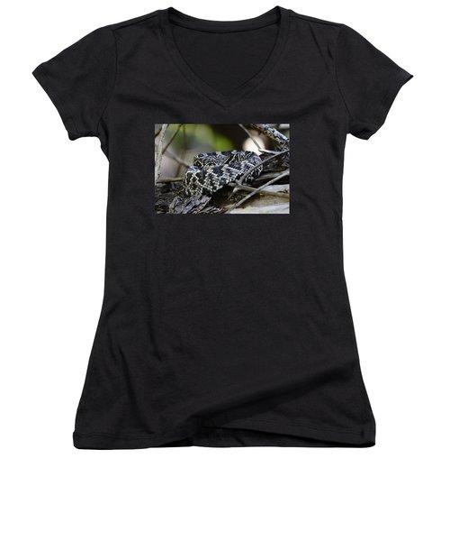 Eastern Diamondback-1 Women's V-Neck T-Shirt (Junior Cut) by Rudy Umans