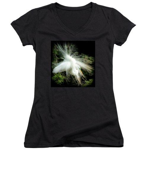Elegance Of Creation Women's V-Neck T-Shirt (Junior Cut) by Karen Wiles