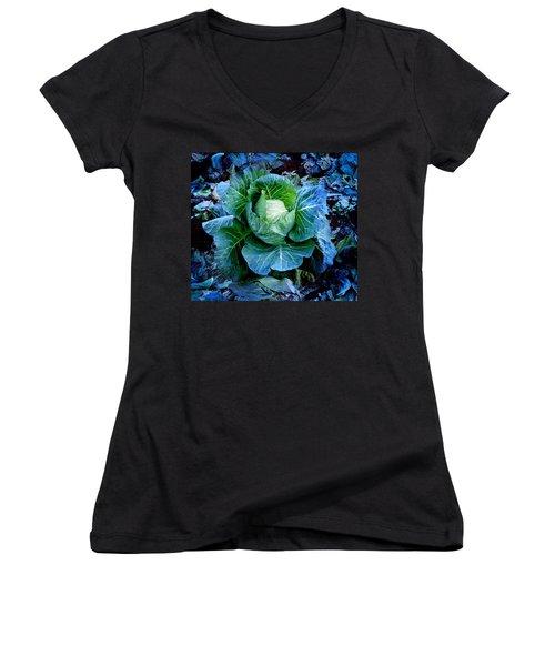 Flower Women's V-Neck T-Shirt (Junior Cut) by Julian Cook