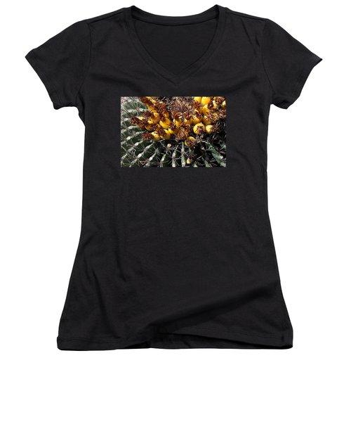 Forbidden Fruit Women's V-Neck T-Shirt (Junior Cut) by Joe Kozlowski