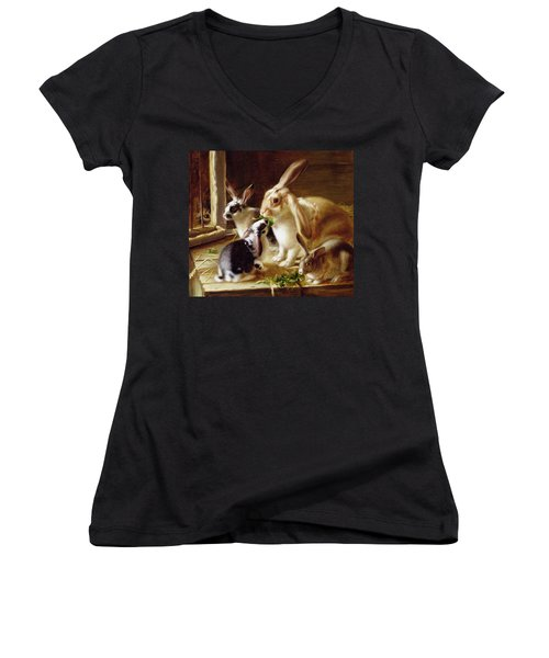 Long-eared Rabbits In A Cage Watched By A Cat Women's V-Neck T-Shirt (Junior Cut) by Horatio Henry Couldery